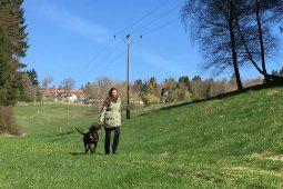 Urlaub mit Hund | Hotel Landgut Aschenhof